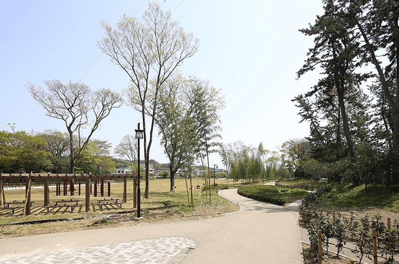 公園整備工事(松並木公園)